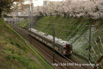 桜の切り通し.JPG